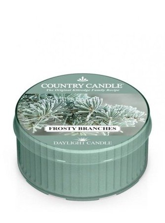 COUNTRY CANDLE Daylight Frosty Branches